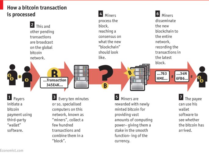 bitcoin-infographic.png