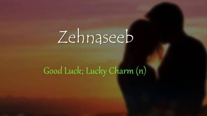 Zehnaseeb
